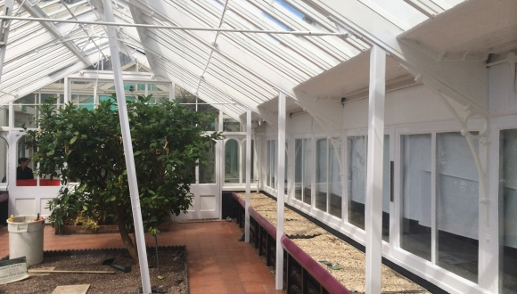 Inside of Mediterranean Glasshouse
